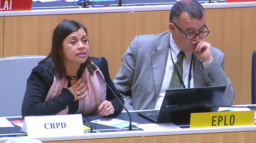 Maria Soledad Cisternas, (in translation), Chair of the Committee on the Rights of Persons with Disabilities (CRPD)